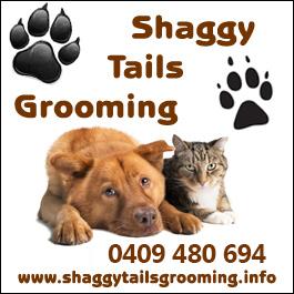 shaggy_tails_n3_041213 - Copy